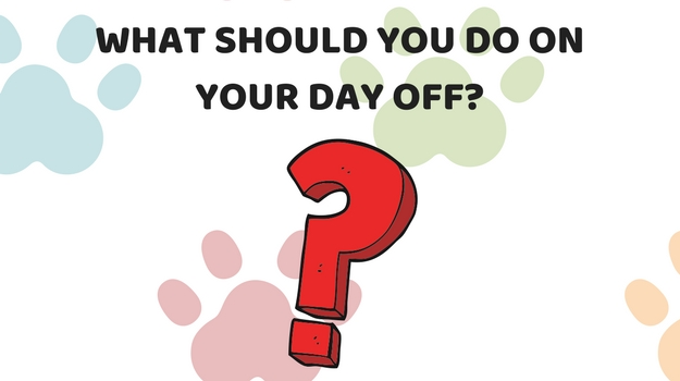 Tell us about your day and we'll tell you what you should do on your day off