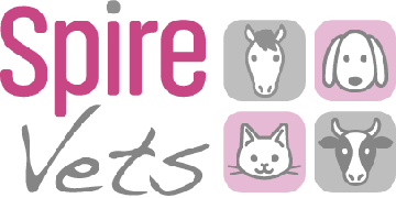 Go to Spire Vets profile