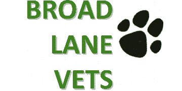 Broad Lane Vets Ltd  logo