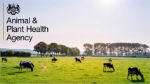 Veterinary roles with the APHA